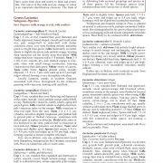 Kibby_new_book_sample2_text